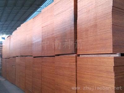 建筑木模板 货真价实 湖北经销商再订中南神箭
